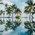Palmy a voda